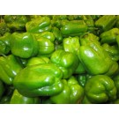 Capsicum Green 500gm