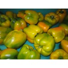 Capsicum Yellow 250gm